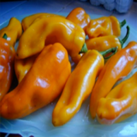 italian-frying-peppers