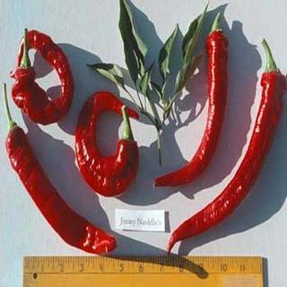 Jimmy Nardello's Peppers