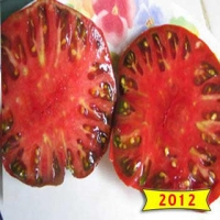 Black Tom Heirloom Tomato Seeds