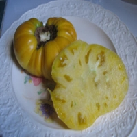 Hugh's Heirloom Tomato Seeds