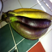Waimanalo Long Heirloom Eggplant Seeds