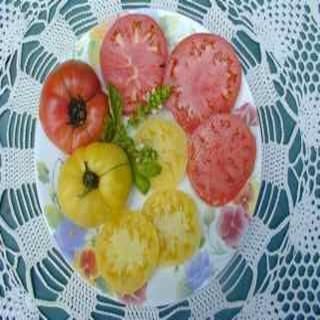 Tiffen Mennonite Heirloom Tomato Sliced on a Plate